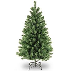 4.5' North Valley® Spruce Tree