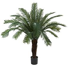 5 Ft. Cycas Tree