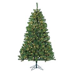 7' Montana Pine Tree - 500 Clear Incandescent Lights