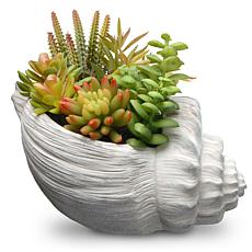 "9.8"" Artificial Succulent Plants"