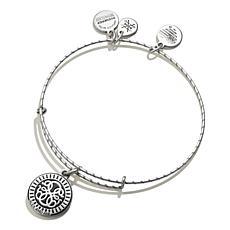 Alex and Ani Path of Life Embossed Paint Charm Bangle Bracelet