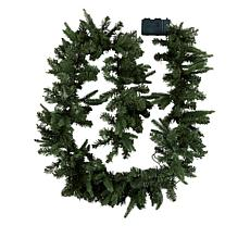 """As Is"" American Tree & Wreath 9' Color-Changing Garland with Remot..."
