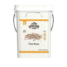 Augason Farms 253-Serving Pinto Beans