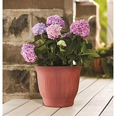 "Bloem Colonnade 8"" Planter"