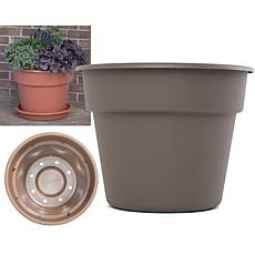 "Bloem Dura Cotta 12"" Planter"
