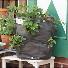 BloemBagz Strawberry Planter Bag 9 Gallon
