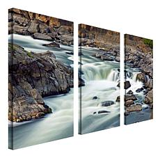 CATeyes 'A Treasure' Multi-Panel Art Collection