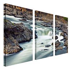 CATeyes 'A Treasure' Multi-Panel Art Collection