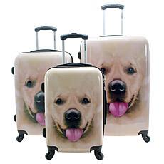 Chariot 3-piece Hardside Luggage Set - Labrador