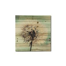 "Dandelion Wishes 20"" x 20"" Print on Wood"