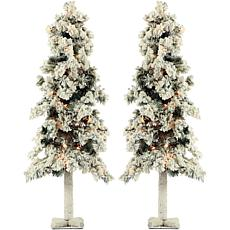 Fraser Hill Farm 4' Snowy Alpine Trees with Clear Lights - Set of 2
