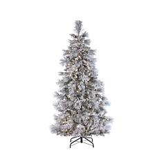 Gerson 7' LED Lighted Flocked Snowbell Pine Tree
