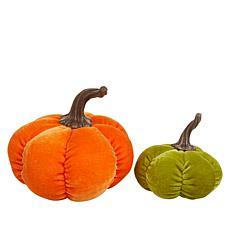 Harvest Lane 2-piece Fabric Fall Pumpkin Set