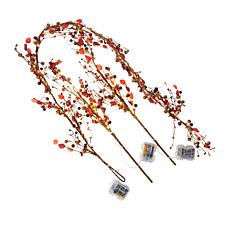 Harvest Lane Pre-Lit Garland and 2-piece Set of Twigs with Timer