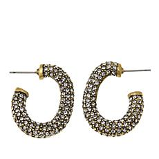 "Heidi Daus ""Lovely Links"" Pavé Crystal Hoop Earrings"