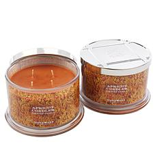 HomeWorx by Harry Slatkin 2-pack 4-Wick Candles - Apricot Cobbler