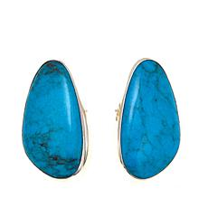 Jay King Azure Peaks Turquoise Sterling Silver Earrings