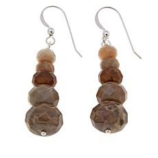 Jay King Mixed Petrified Wood Beaded Drop Earrings