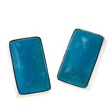 Jay King Rectangular Blue Ridge Turquoise Sterling Silver Earrings