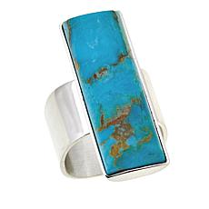 Jay King Rectangular Kingman Turquoise Sterling Silver Ring