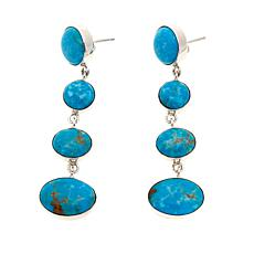 Jay King Sonoran Blue Turquoise Drop Sterling Silver Earrings