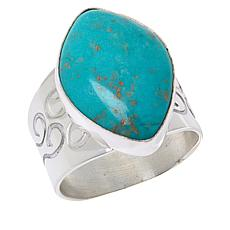 Jay King Sterling Silver Andean Blue Turquoise Ring