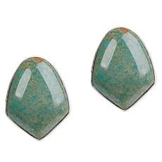 Jay King Sterling Silver Freeform Azure Peaks Turquoise Stud Earrings