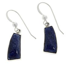 Jay King Sterling Silver Freeform Blue Sodalite Earrings