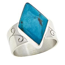 Jay King Sterling Silver Freeform Cloudy Mountain Turquoise Ring