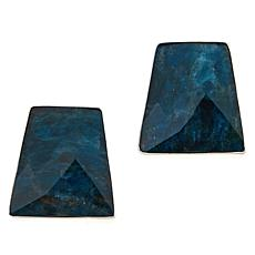 Jay King Sterling Silver Freeform Indigo Blue Agate Earrings