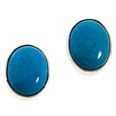 Jay King Sterling Silver Royal Blue Turquoise Oval Button Earrings