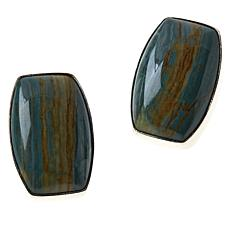 Jay King Sterling Silver Swamp Bog Petrified Wood Earrings