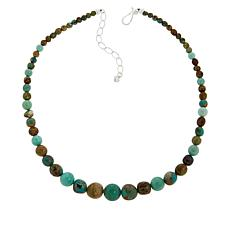 Jay King Sterling Silver Turquoise and Variscite Bead Necklace