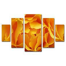 Kurt Shaffer 'Hypnotic Yellow Rose' Art Collection