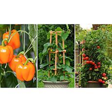 Leaf & Petal Designs 3-piece Patio Perfect Vegetable Trio