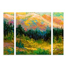 "Marion Rose ""Summer High Country"" Panel Art - 24"" x 32"""