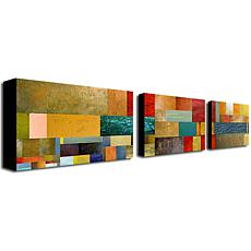 Michelle Calkins'Project V' Multi-Panel Art Collection