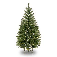 National Tree 4' Aspen Spruce Tree with 100 Clear Lights