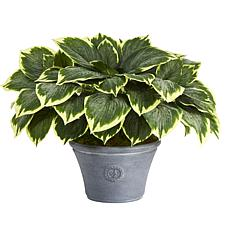 """Nearly Natural 23"""" Variegated Hosta Artificial Plant in Gray Planter"""