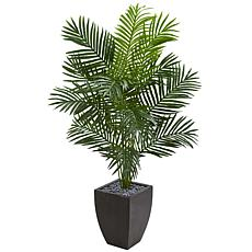 Nearly Natural 5.5 ft. Artificial Paradise Palm Tree in Black Planter