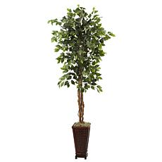 "Nearly Natural 6' 5"" Ficus with Decorative Planter"
