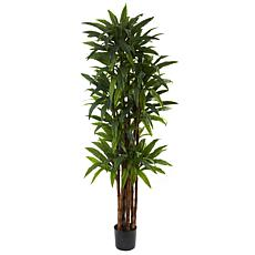 Nearly Natural 6.5 ft. 8-Trunk Dracaena Tree with 214 Leaves