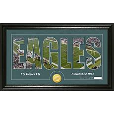 NFL Bronze Coin Panoramic Photo Mint - Eagles