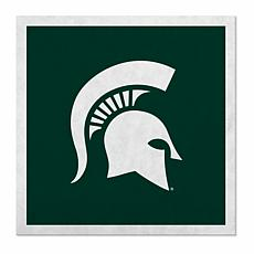 """Officially Licensed NCAA 23"""" Felt Wall Banner- Michigan State Spartans"""