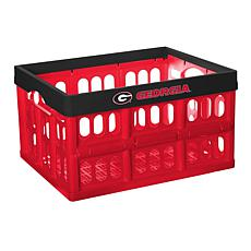 Officially Licensed NCAA Collapsible Crate - Georgia