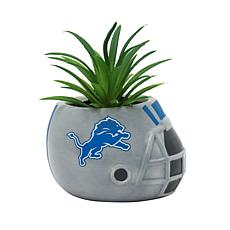 Officially Licensed NFL 2-pack Planter - Detroit Lions