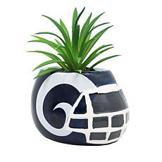 Officially Licensed NFL 2-pack Planter - Los Angeles Rams
