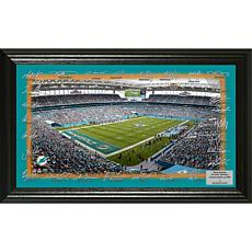 Officially Licensed NFL 2017 Signature Gridiron Collection - Dolphins