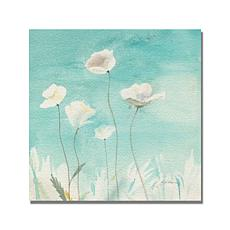 "Shelia Golden ""White Poppies"" Canvas Art - 24"" x 24"""