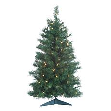 Sterling 3' Colorado Spruce Lighted Christmas Tree